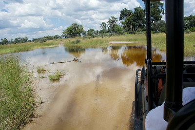 The airstrip services many camps. Chitabe is about 45 minutes away...wow an extra game drive!