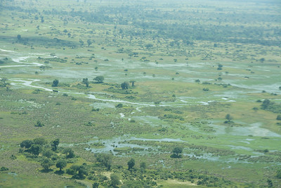 We stay in the Okavango Delta for our next camp...love the bush plane arial views.