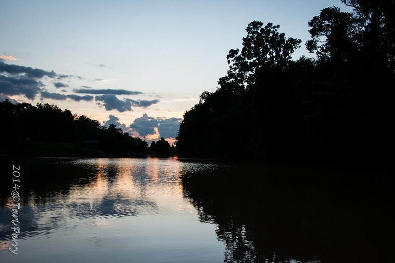 SCENERY - Kinabatangan river-0582