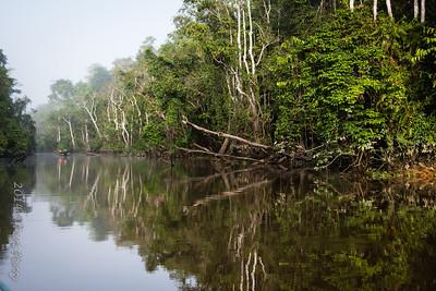 SCENERY - Kinabatangan river-0322