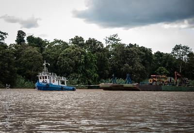 SCENERY - Kinabatangan ferry-0490