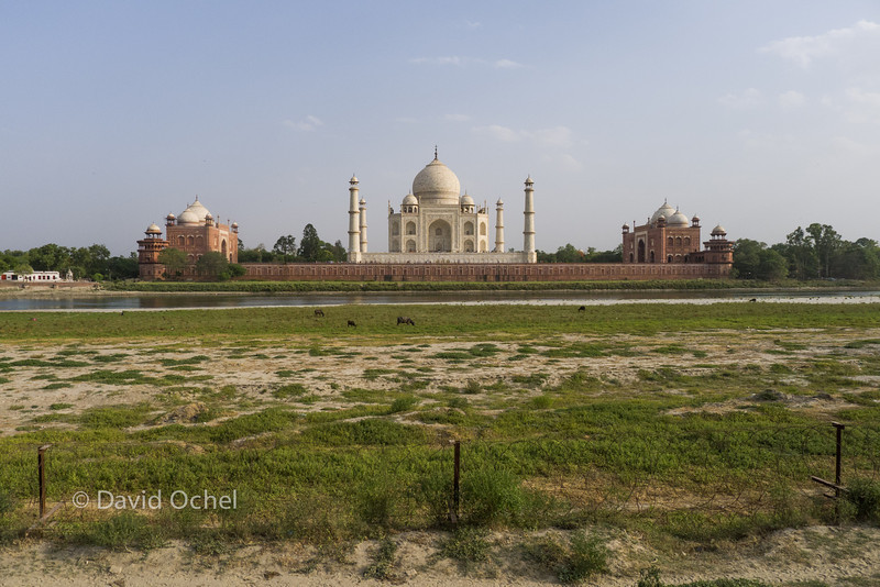 View of the Taj Mahal from Mehtab Bagh.