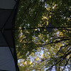 View Saturday morning from inside Kara's tent