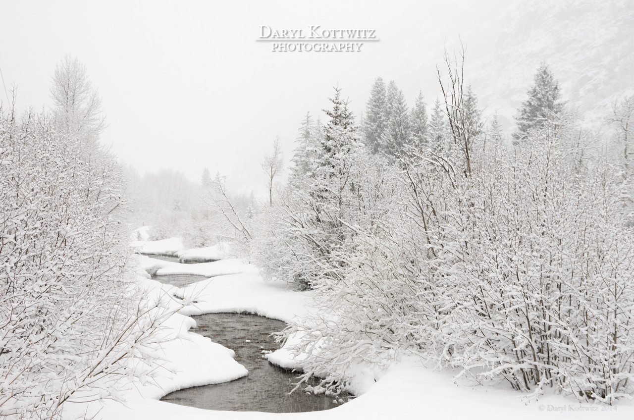 Clear Creek is a mountain stream that runs through Silver Plume, CO.  The freshly frosted trees and the snow bridging across the creek made for a beautifully peaceful scene.