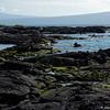 Isabela Island shoreline