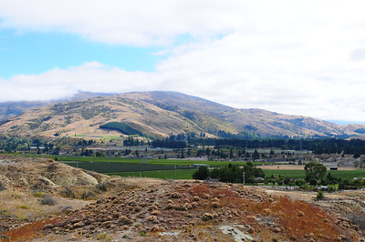 2014_Wanaka_Goldfields      0004