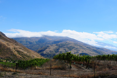 2014_Wanaka_Goldfields      0011