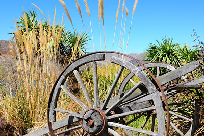 2014_Wanaka_Goldfields      0019