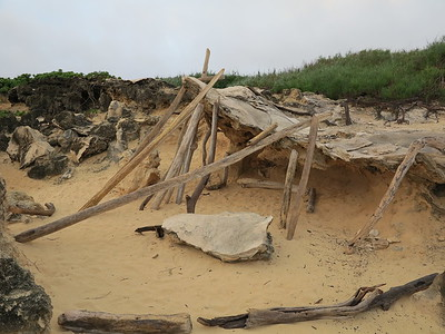 Driftwood and limestone fort.