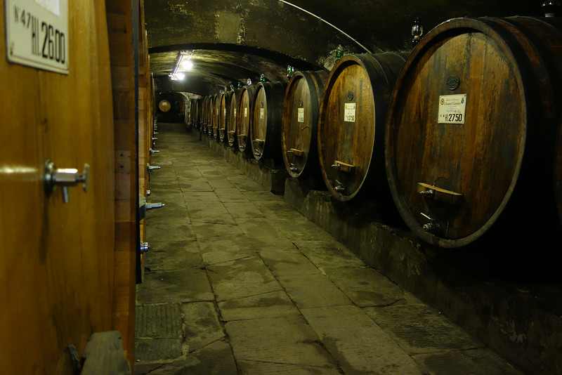Their wine cellar with barrels of Chianti Classico