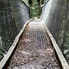 Borland Nature Walk