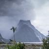 Milford Sound foreshore walk