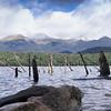 Peninsula Lookout Track to Lake Monowai
