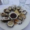 Lunch at Doyel's; Watson's Bay, Sydney