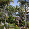 Palm Cove - Melaleuca Resort