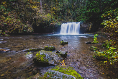 Butte Creek Falls November 2014