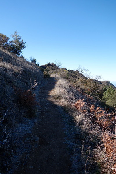First section of the trail