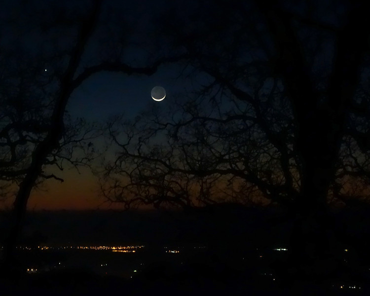 The crescent moon was lovely