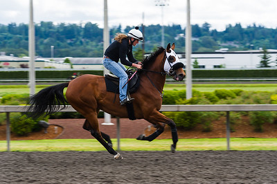 Emerald Downs May 2014