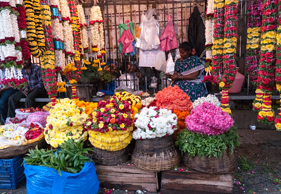 Garland vendor Sampige Road, Malleswaram, Bangalore.