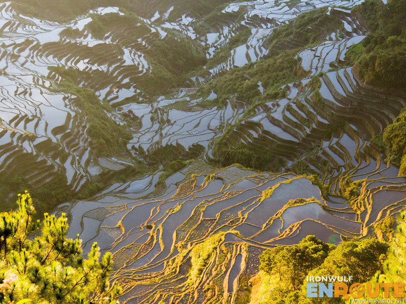 Even water-filled rice paddies looks amazing