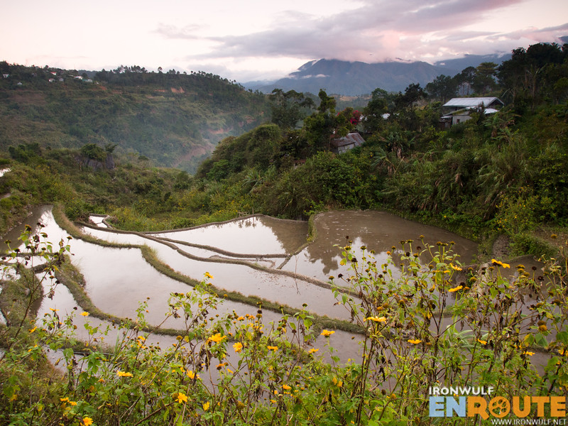 A rice terraces closer to Favuyen