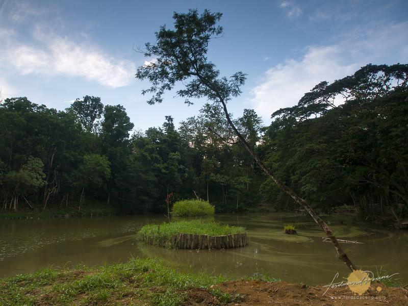 Bingwitan Fishing area