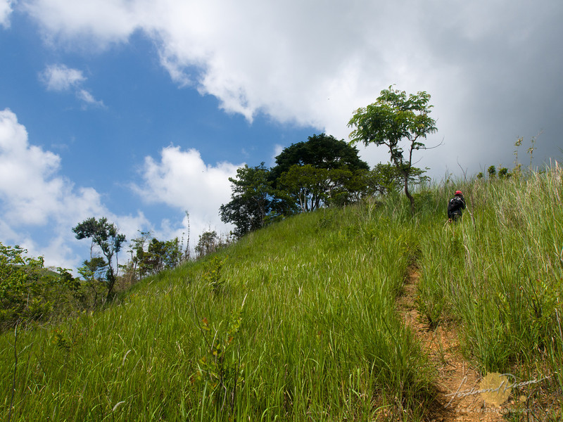 Lots of uphill climb on an open trail