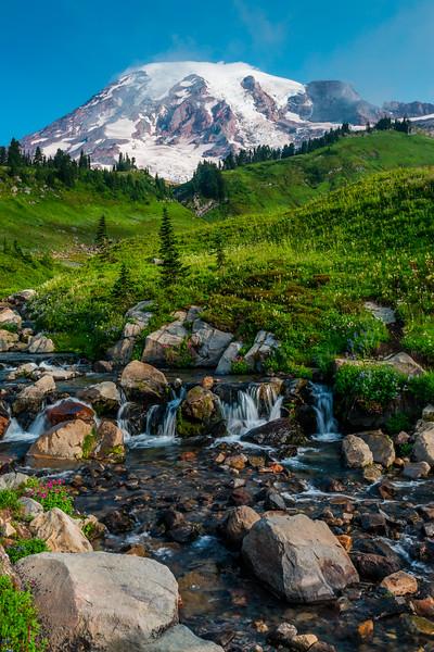 Myrtle Creek at Mt Rainier