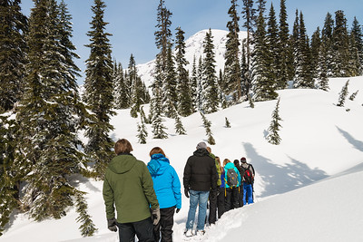 Snowshoe Hike Mt Rainier