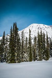 The Sparkling Snow at Mt Rainier