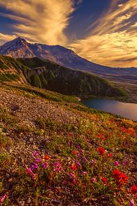 Mt St Helens Sunset