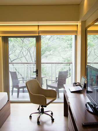 Workspace with relaxing views