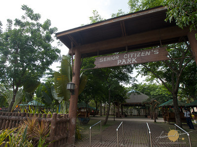 RAVE of Pasig | Rainforest Adventure Experience