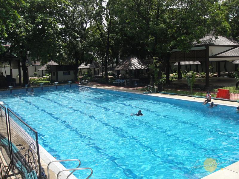 Olympic-sized lap pool