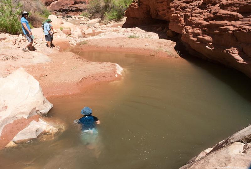Andy swims Rider Canyon