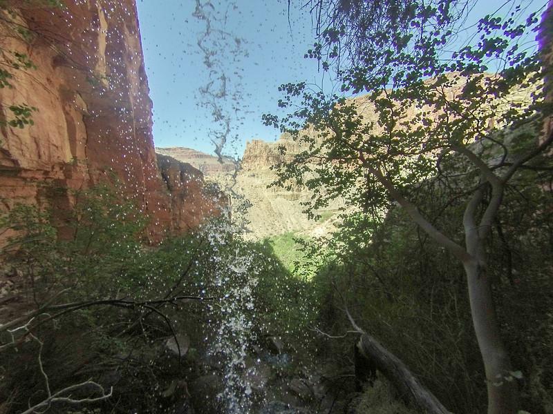 Behind Dutton Spring falls