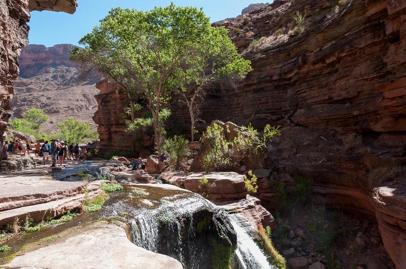 Deer Creek's oasis