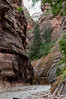 The Narrows, Zion