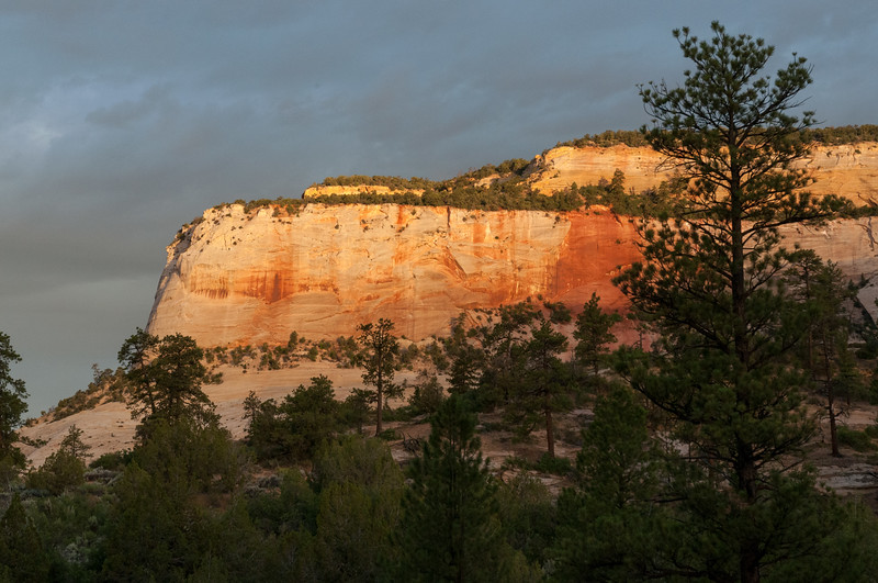 Sunrise in Zion