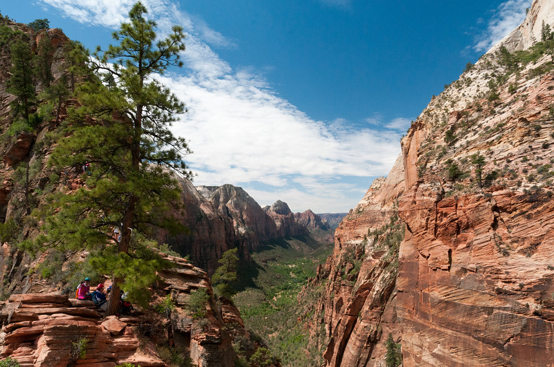 Zion Canyon and Angel's Landing