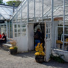Greenhouse cafe with home baked goods and local (200M away) varietal wines. Part of the overall Rosendals horticultural gardens area within Djurgardens .