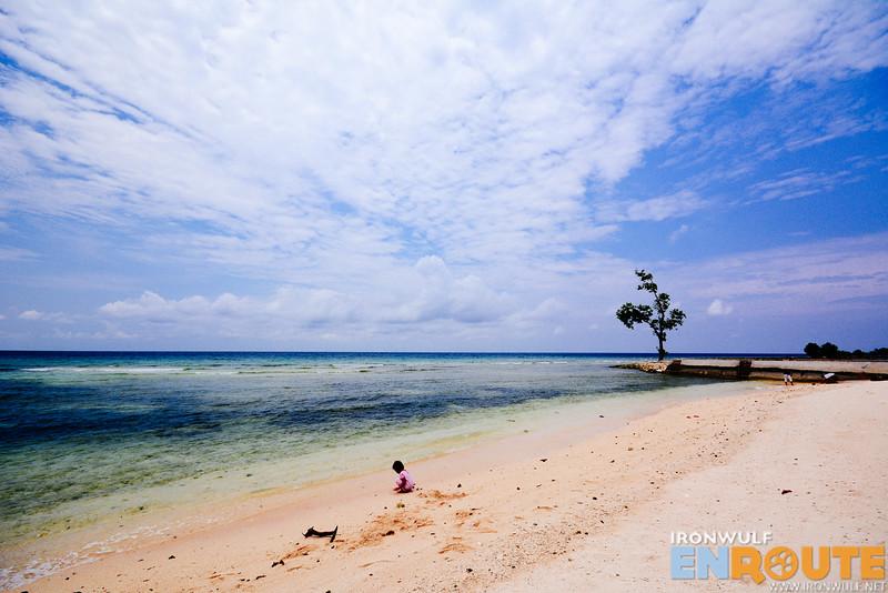 Dr Ibbo's beach stretch