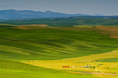The Palouse June 2014