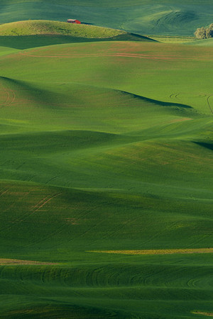 Lone Red Barn in the Palouse