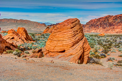 2014/01/26 Valley of Fire