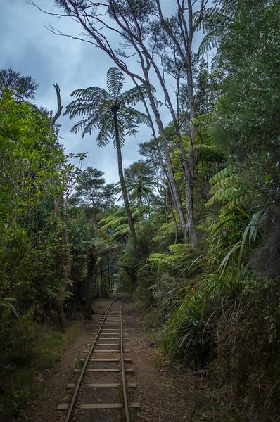 2014-08 New Zealand 0682