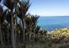 2014-07 New Zealand 0364