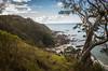 2014-07 New Zealand 0379