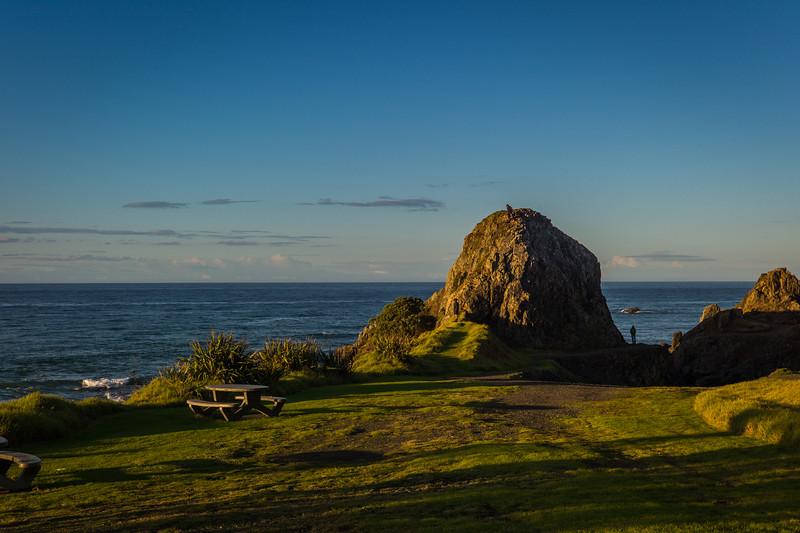 2014-07 New Zealand 0394
